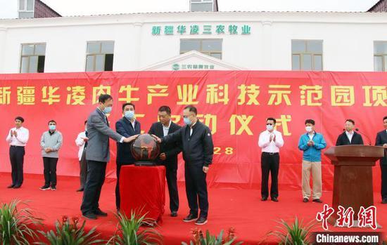 新疆龙头企业华凌集团计划3-5年在塔城存栏育肥肉牛10万头