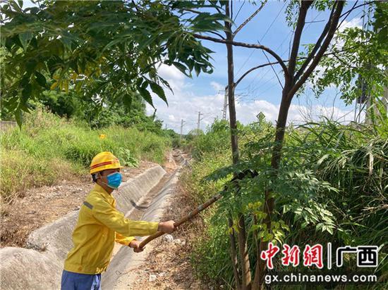 铁路职工正在对侵入铁路限界的树木进行砍伐。张成毅 摄