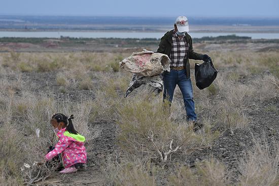 克拉瑪依市環保志愿者、熱心市民戈壁灘上撿拾白色垃圾
