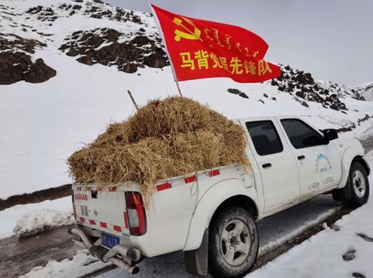 巴西里格村马背党员先锋队为牧民送去草料(敖云图摄)