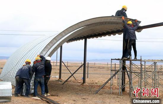 新疆阿勒泰與華凌集團共建肉牛養殖基地 促進農牧民增收致富