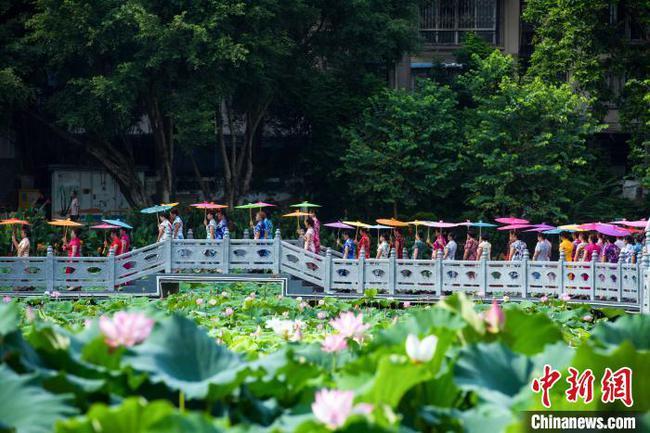梧州荷花公園免費開放 市民演繹旗袍秀