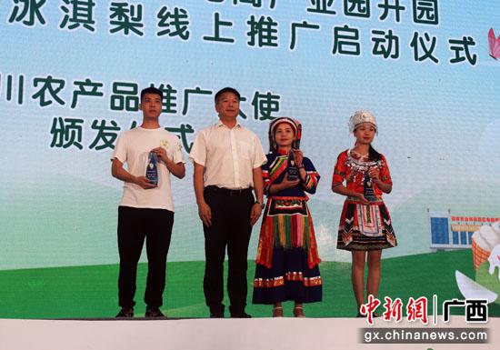 贺州农投(富川)农产品电商产业园开园 线上推广冰淇梨