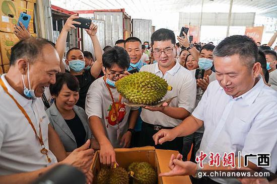 图为凭祥市委副书记、市长武晓辉(右二)现场展示榴莲。陈冠言  摄