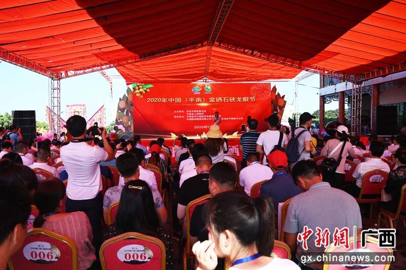 2020年中国(平南)富硒石硖龙眼节开幕