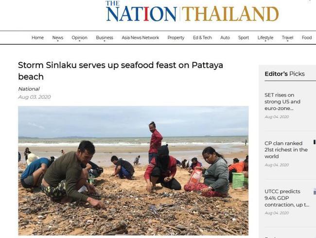 """台风过境带来""""海鲜大餐"""" 泰民众涌到海滩捡青口贝"""