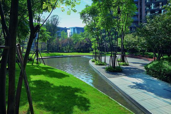 龙湖园区实景图
