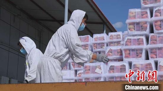 新疆1至7月霍尔果斯口岸进出口货运量超1700万吨