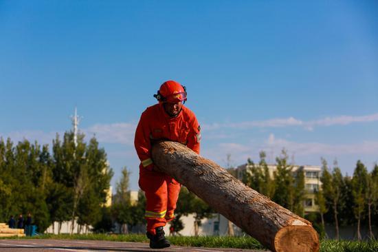 倒木清理。