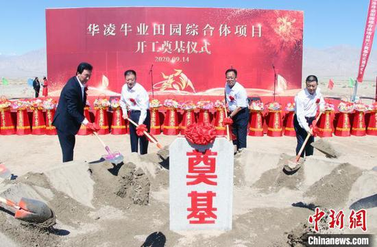新疆华凌集团首个牛业田园综合体项目在天山南麓奠基。孙亭文 摄