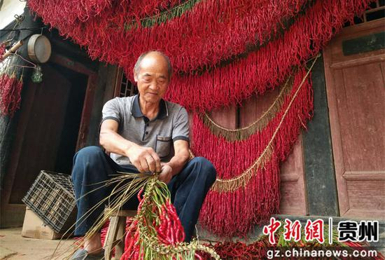 鼎新乡村民在编织辣椒 李蕾 摄