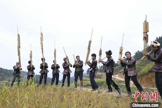 高增乡建华村侗族村民在吹奏芦笙为抢收香禾糯助兴。 吴德军 摄