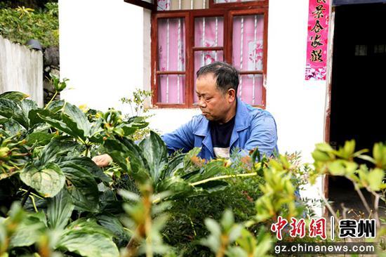 http://www.edaojz.cn/difangyaowen/811080.html