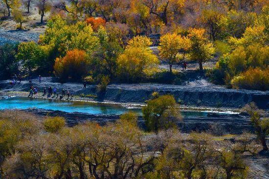 10月2日,游客在白杨河大峡谷谷底游玩。闵勇  摄