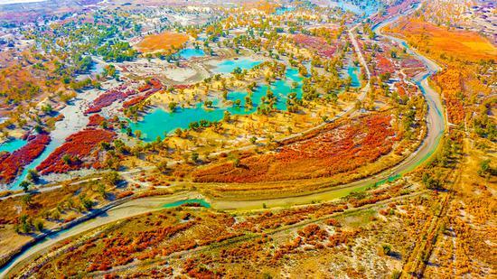 新疆尉犁:五彩斑斓塔里木