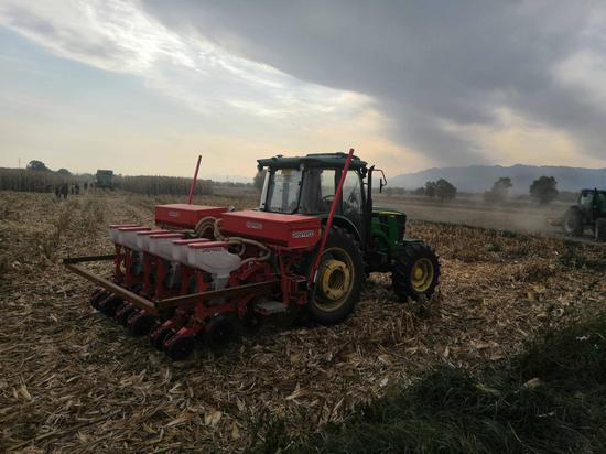 宁夏探索玉米托管全程一体化种植服务项目