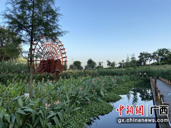 """广西""""纳污河""""蜕变:综合整治生态修复 守护青山绿水"""
