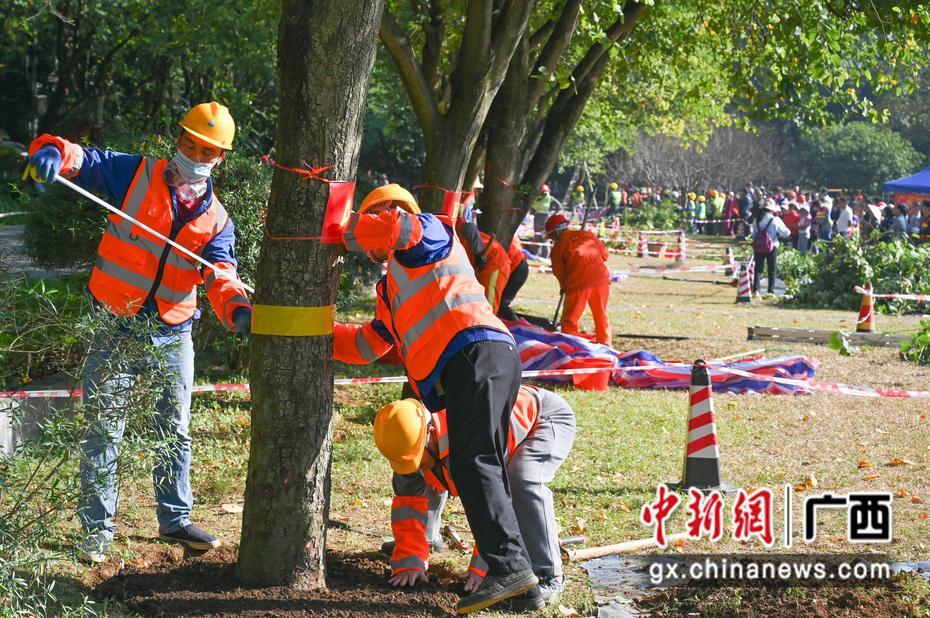柳州市第六届园林绿化养护技能大赛开赛