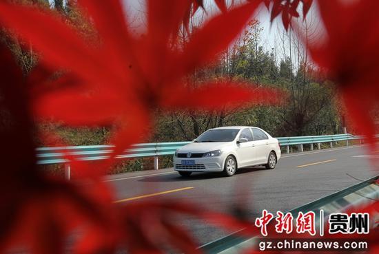 2020年11月12日,车辆行驶在国道212贵州省毕节市黔西县素朴镇境内。史开心 摄