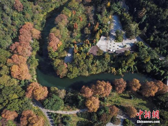 11月12日,航拍贵阳阿哈湖国家湿地公园。初冬时节,贵阳市阿哈湖国家湿地公园色彩斑斓,风景如画。中新社记者 瞿宏伦 摄