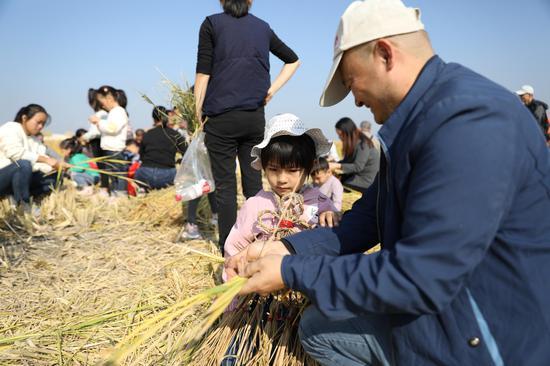 游客带着孩子体验稻田生活 项飞 摄