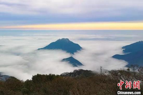 贵州梵净山冰花漫山 云雾缭绕仿若仙境