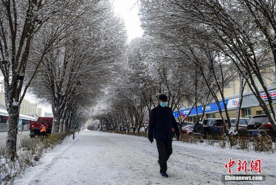 """大雪过后 乌鲁木齐街头""""玉树琼花"""""""