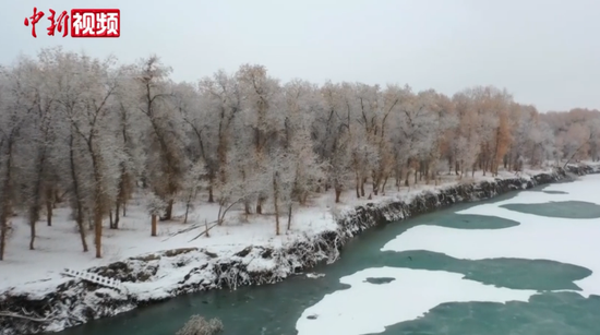 下雪了!新疆胡楊林解鎖雪景模式