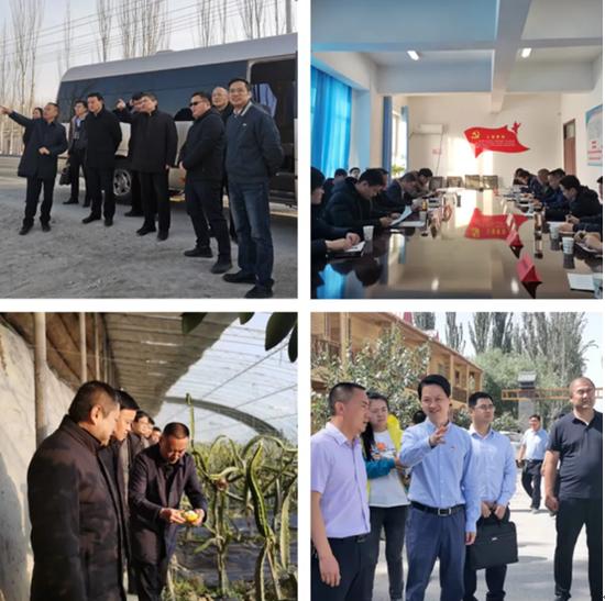 杭州援疆指挥部推进巴格其村打造乡村振兴示范点
