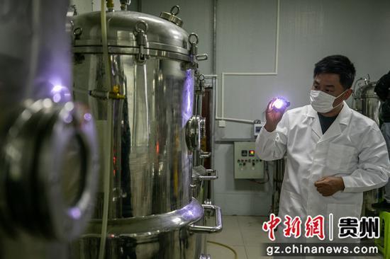 12月23日,村民在贵州省毕节市大方县慕俄格街道办关井村乌蒙腾菌业车间里查看菌种培养情况。