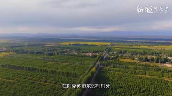 """""""全球500佳境""""""""綠色長城""""——柯柯牙綠化工程"""