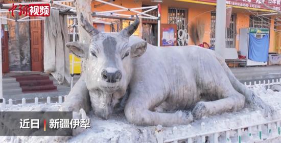 新疆大叔路边用雪堆出卧牛