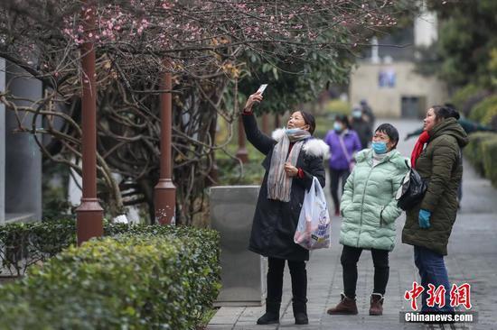 1月7日,受强冷空气影响,贵州省贵阳市气温骤降,最低气温在-4℃至-2℃之间。图为贵阳市民冒冷在街头赏花。 中新社记者 瞿宏伦 摄