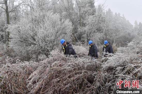 1月7日,贵阳供电局输电管理所驻点观冰员在开阳县双流镇用沙村巡线观冰。乔啟明 摄