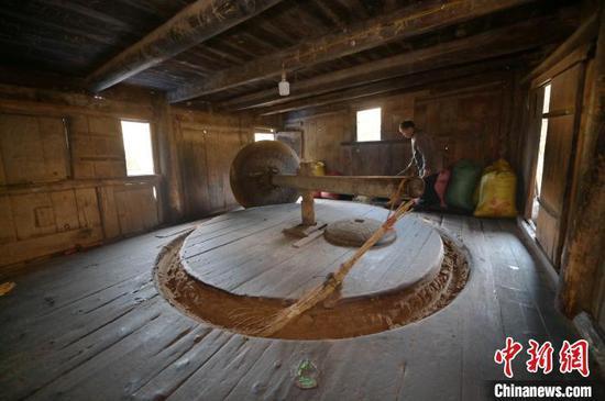 图为一名侗族榨油师傅在水碾房查看茶籽碾压情况。 吴德军 摄