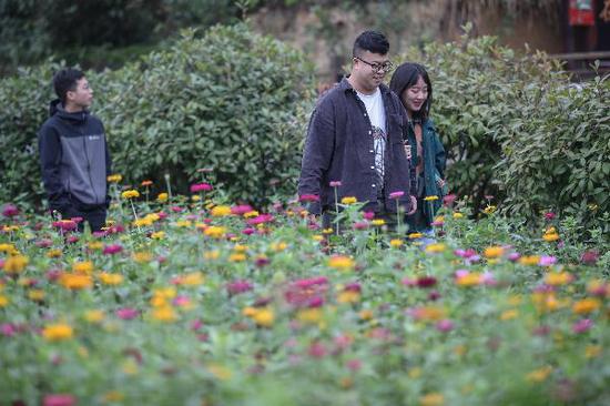 游客在花茂村游玩。瞿宏伦 摄