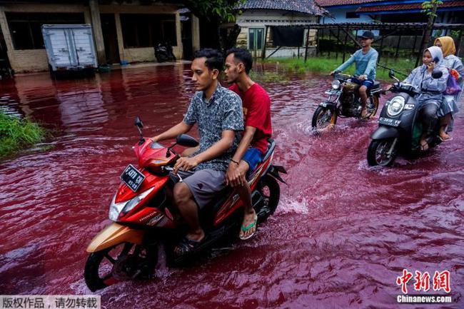 """洪水变""""红水""""?印尼蜡染厂遭水淹 意外成打卡点"""