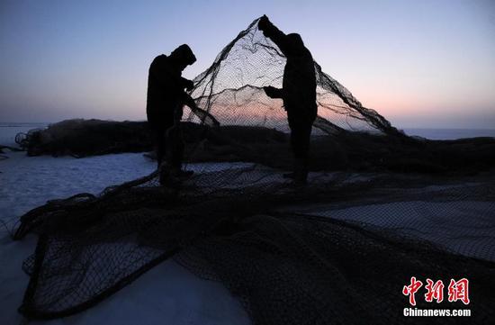 踏雪寻鱼!新疆乌伦古湖冰下捕鱼
