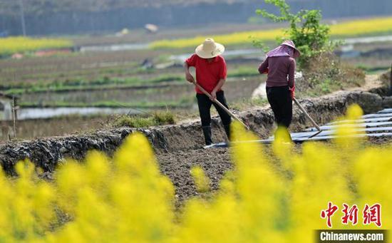 贵州从江:抢抓农时 春耕备耕