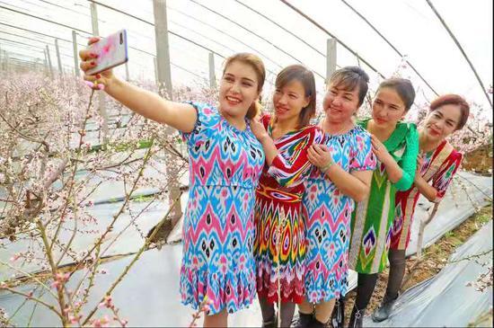 """新疆库车市:""""赏花经济""""助农增收 ?"""