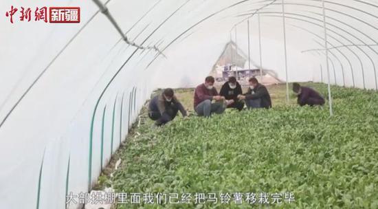 新疆喀什春回大地不误农时 科学有序推进春耕