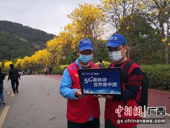 "5G+VR""云赏花"" 邀您共赏美好春光"