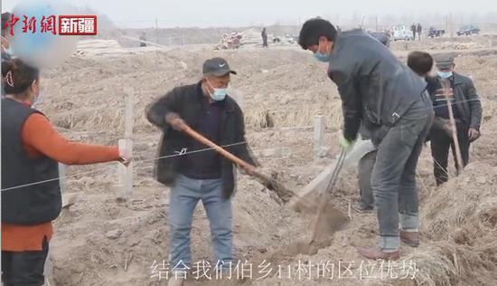 新疆喀什推动产业融合发展 助力乡村产业振兴