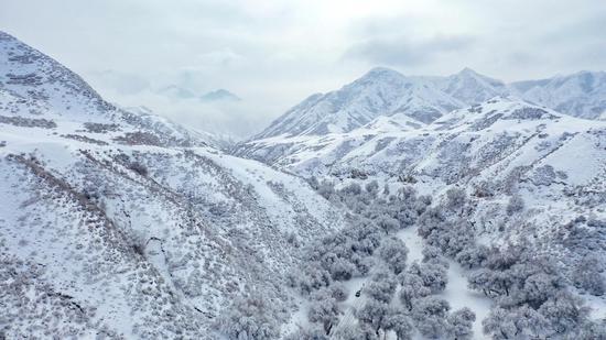 新疆天山天池:雪雾缭绕出奇观