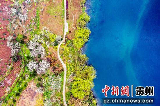贵州黔西:春暖花开乡村美