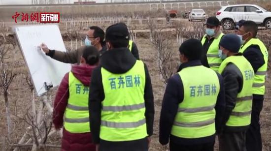 喀什技能培训提升园林绿化养护效果