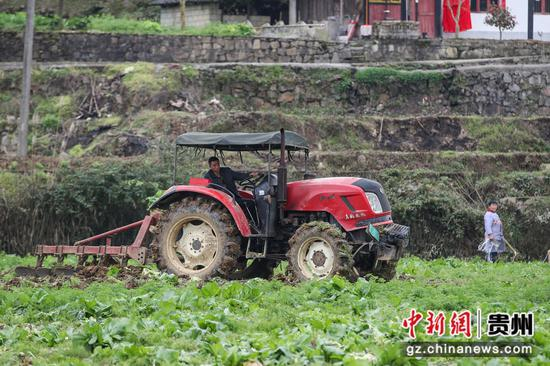 图为农户在田间驾驶农机犁地。