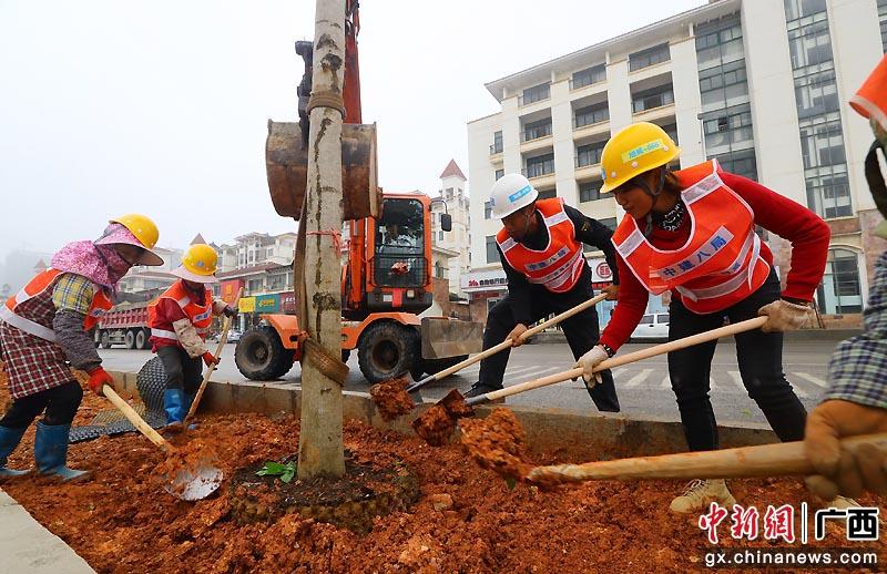 南宁党员干部植树扮靓城市道路