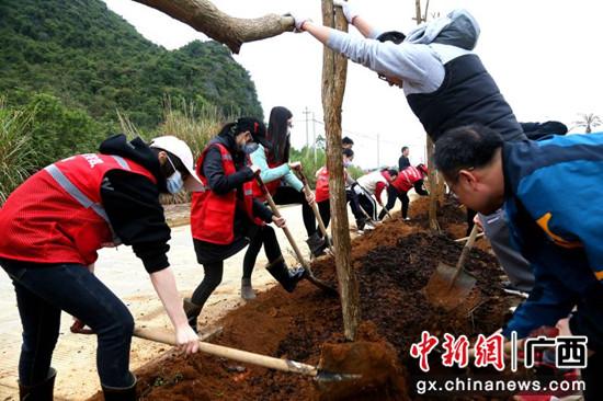 广西-东盟经开区:植绿树 添新绿