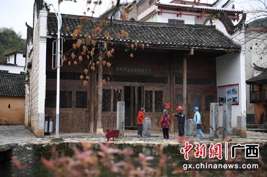 湘江战役旧址广西桂林市走访见闻:红土地上的绿色交响